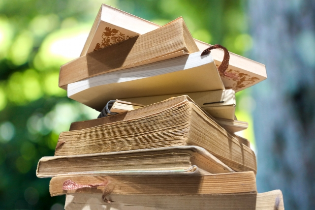 オンライン家庭教師 文学