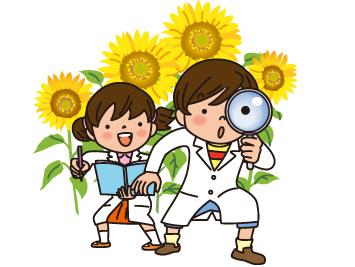 オンライン家庭教師 理科 学習法 受験勉強